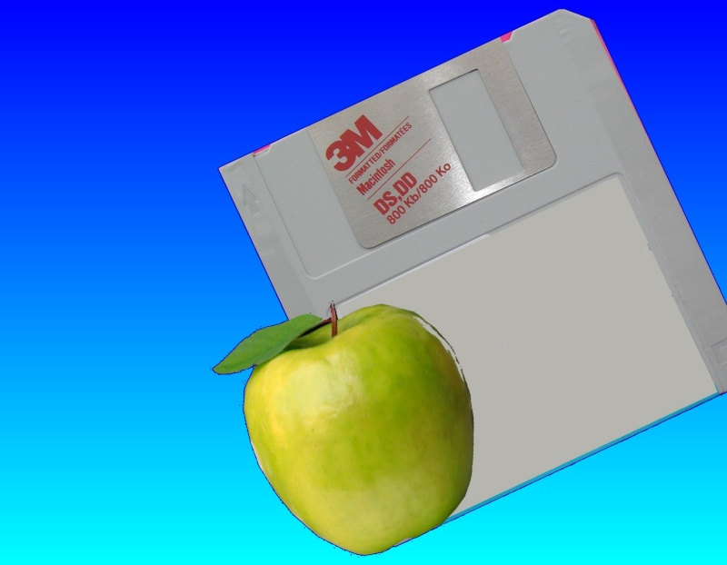 1.0MB DS DD floppy disk from a Mac which needed it's files converting to Word on a PC.